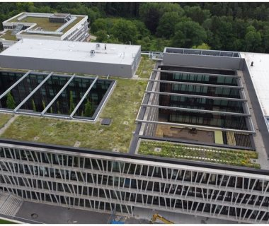 36 Biodiversity Green Roof