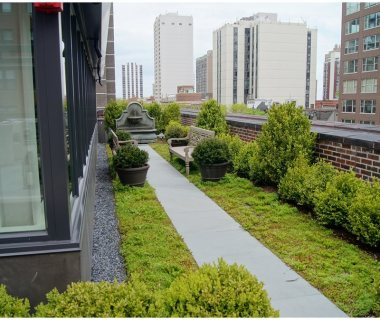 28 Green Roof Pictures