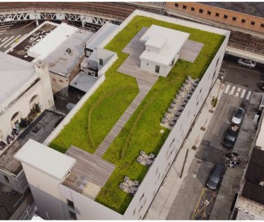 01 Green Roof Pictures