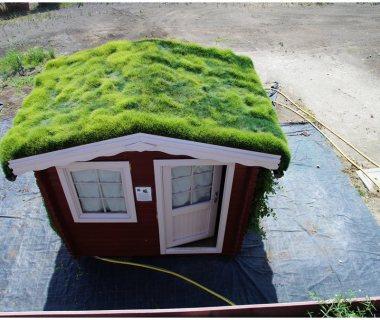 51 Little Green Roof