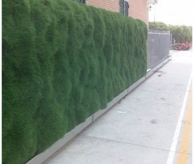 38 Free Standing Green Wall