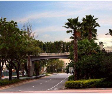 17 Bridge in FL 1st Green Bridge in USA