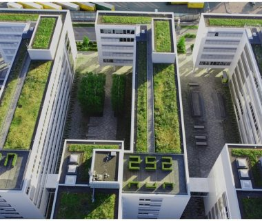 40 Multiuse Green Roof