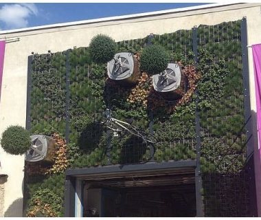 24 Green Wall with trees