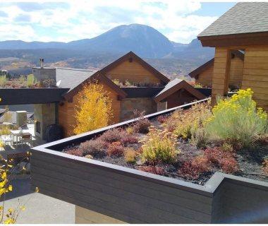 29 Colorado Green Roofs
