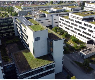 37 Commercial Green Roofs