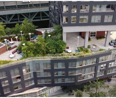 22 Green Roof Solutions, Green Roof Pictures