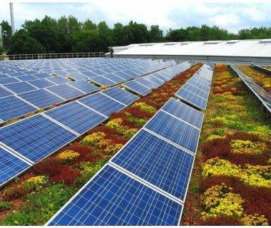 74 PV Solar Garden Roof