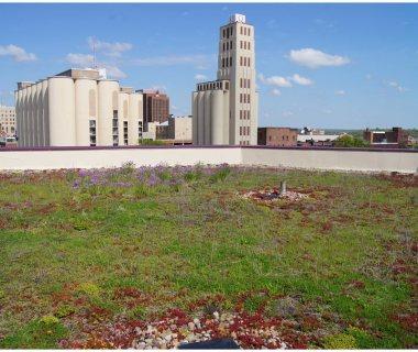 87 University of Akron