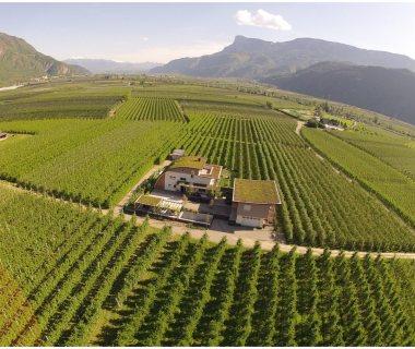 52 Italy Bozen Green Roof
