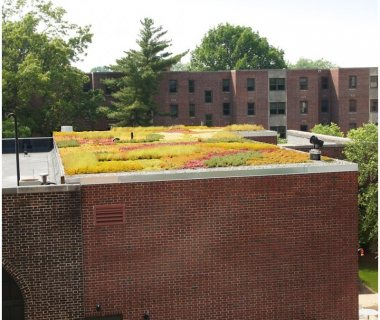63 Lancaster Green Roofs