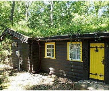 53 Norwegian Log Cabin renovated in Washington, DC