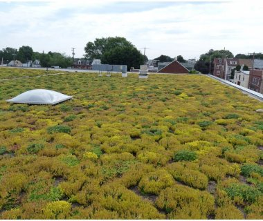 48 GreenRoofTechnology simplified