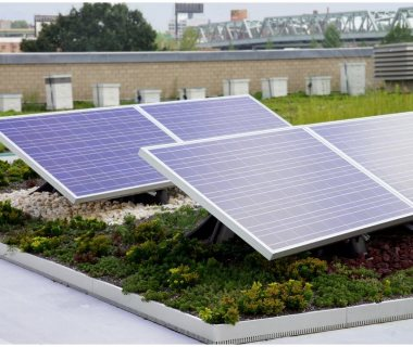 80 Solar Green Roof Pictures