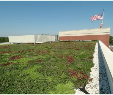 76 Simple Extensive Green Roof