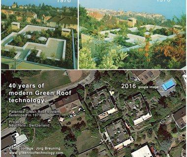 11 Switzerland Green Roof