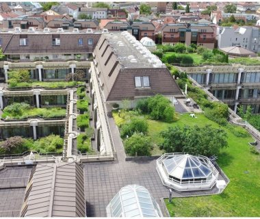 47 Green Roof Solutions