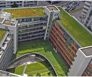 11 Green Roof Solutions