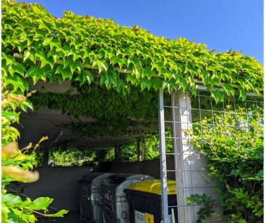 69 Green Roof Solutions