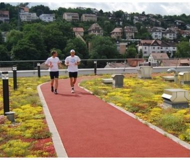 12 Green Roof Solutions