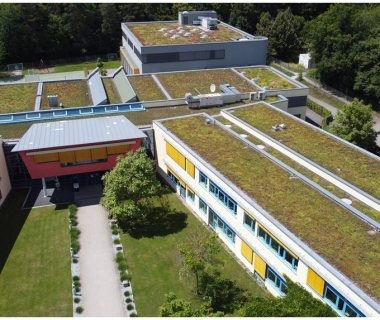 52 Green Roof Solutions