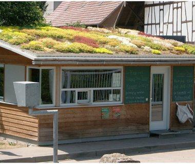 59 Green Roof Technology