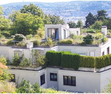 14 Green Roof Technology