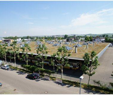 71 Green Roof Technology