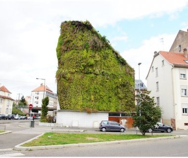 15 GreenRoofTechnology