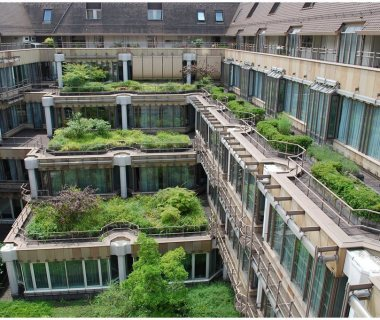 61 GreenRoofTechnology