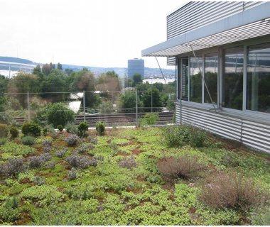54 Green Roof Technology