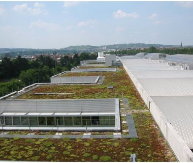 26 GreenRoofTechnology