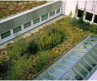 62 Green Roof Technology