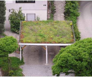 58 GreenRoofTechnology