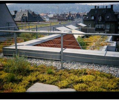 72 Green Roof Technology