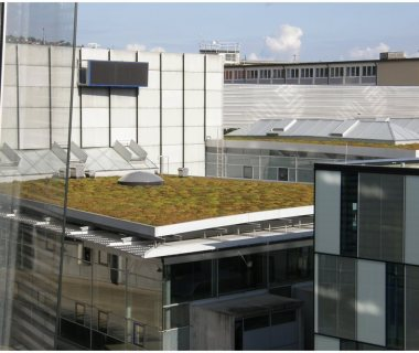 58 Green Roof Technology