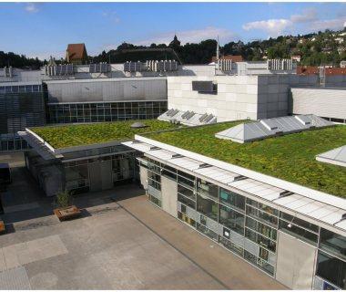 65 Green  Roof Technology