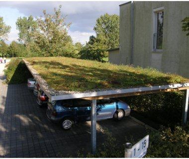 75 Green Roof Technology