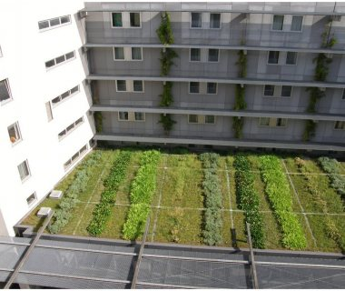 37 GreenRoofTechnology