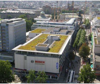 78 Green Roof Technology