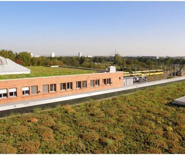 79 Green Roof Technology