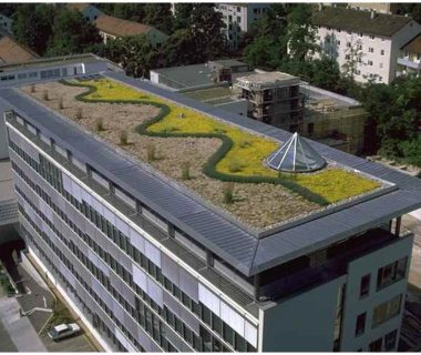 39 Green Roof Pictures