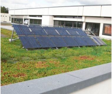 41 GreenRoof Technology