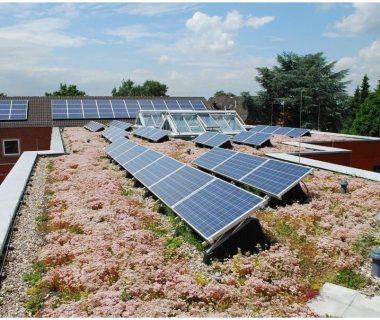 82 Green Roof Technology