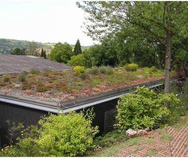 84 Green Roof Technolog