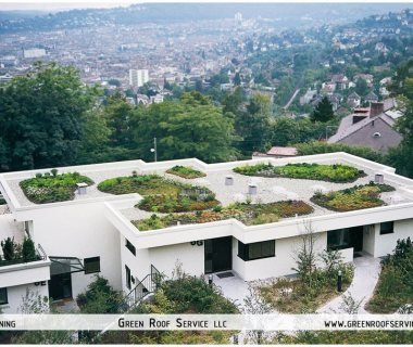 44 Green Roof Technology