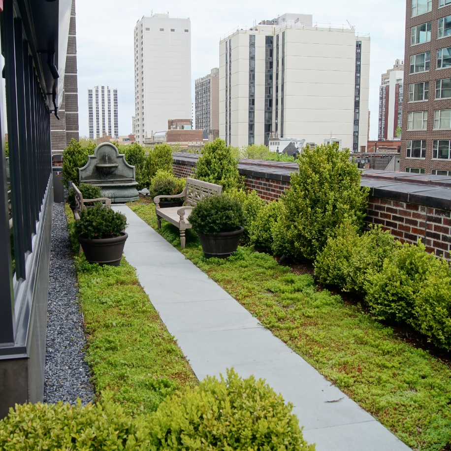 Green Roof Costs and value