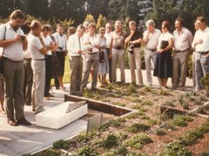 hybrid green roof design system