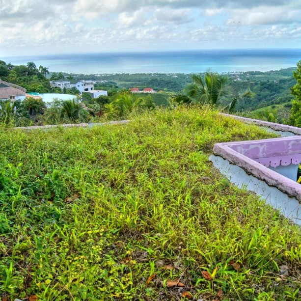 Dominican Republic First extensive Green Roof