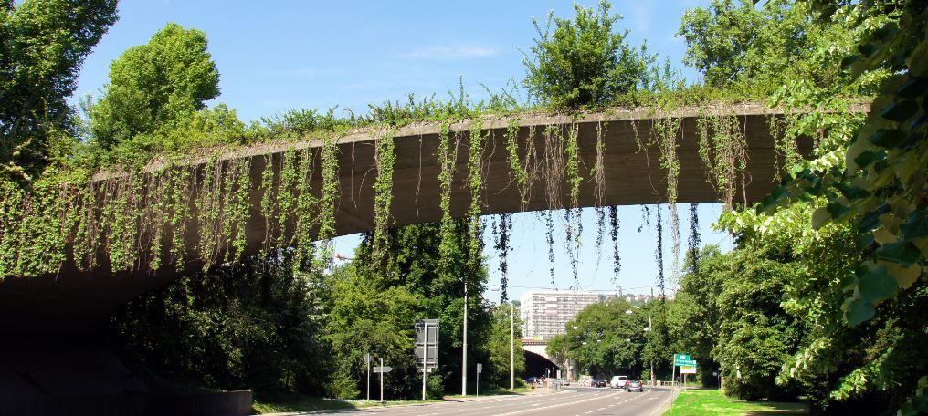 Garden Bridge the First
